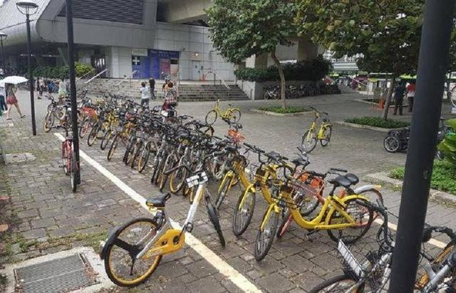 别崇洋媚外了!共享单车欧洲受挫,外国人素质真心不高