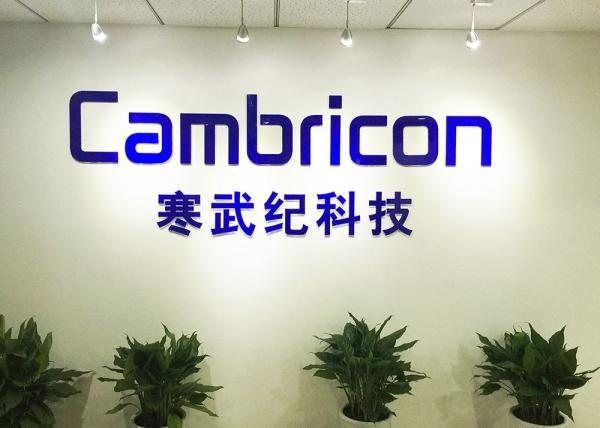 中国这家AI芯片创业公司,估值高达20亿美元