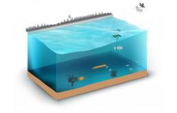 为海浪能采集实现重大工程突破