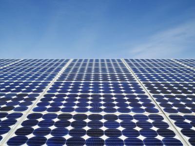 """""""人工树叶""""太阳能转化率可达12.7%"""