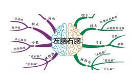 脑图深度对比测评:思维梳理哪家强?