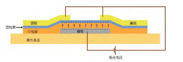 有机硅pdms高透气弹性介电薄膜,可穿戴智能设备及薄膜传感器柔性基底
