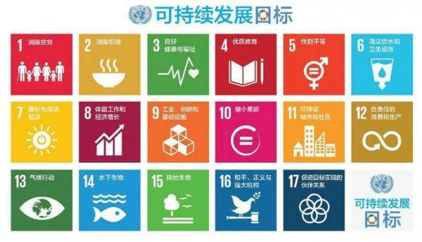 联合国能源可持续发展会议,邀请国际光伏扶贫首倡者阴存琦参加