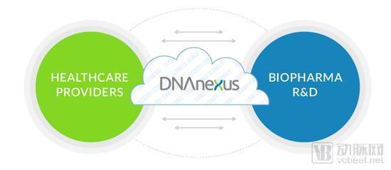 E轮融资高达5800万美元,药明康德被投企业DNAnexus正在打造基因数据战舰