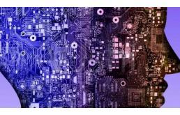 """三維""""芯片大腦"""":構建在芯片上培養腦細胞的模型"""