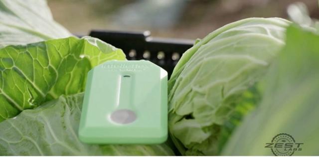 物联网正在从这四个环节减少食物浪费