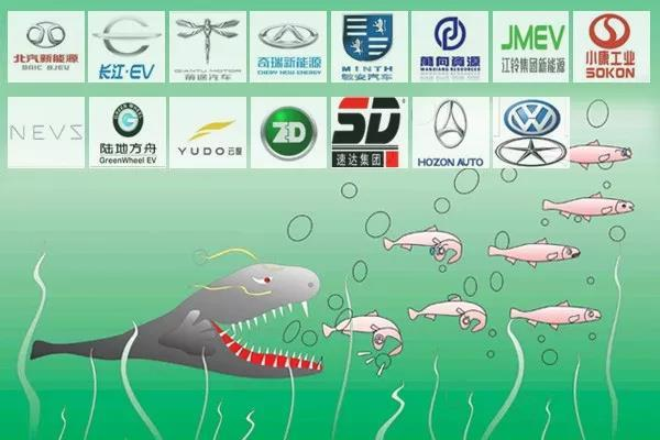纯电动汽车生产资质审批:快放进更强壮的鲶鱼