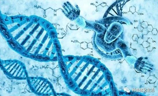 人工智能之遗传算法(GA)