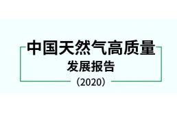 国务院资源与环境政策研究所发布《中国天然气高质量发展报告2020》