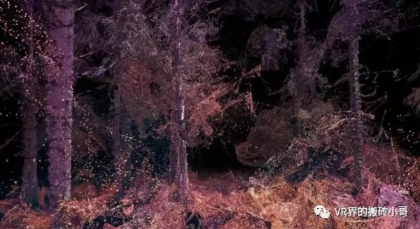 VR技术带你领略动物眼中的奇妙世界
