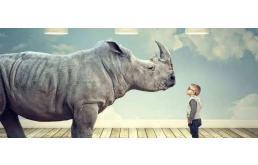 細思極恐的動物園:灰犀牛正在從商業形態上完全取代傳統制造