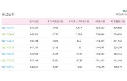 中国移动7月份5G套餐用户数净增2891.3万