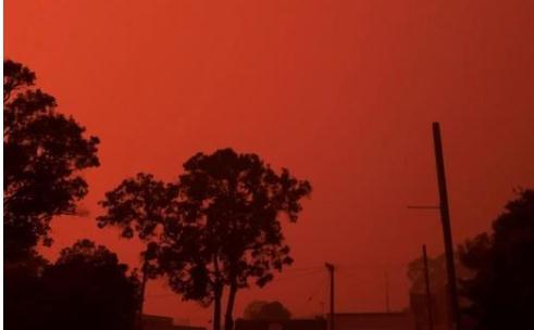 山火危机持续三个月 澳政府仍拒绝收缩煤炭业