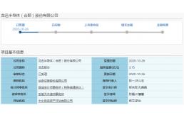 龙迅股份拟募资3.15亿元建设芯片开发项目