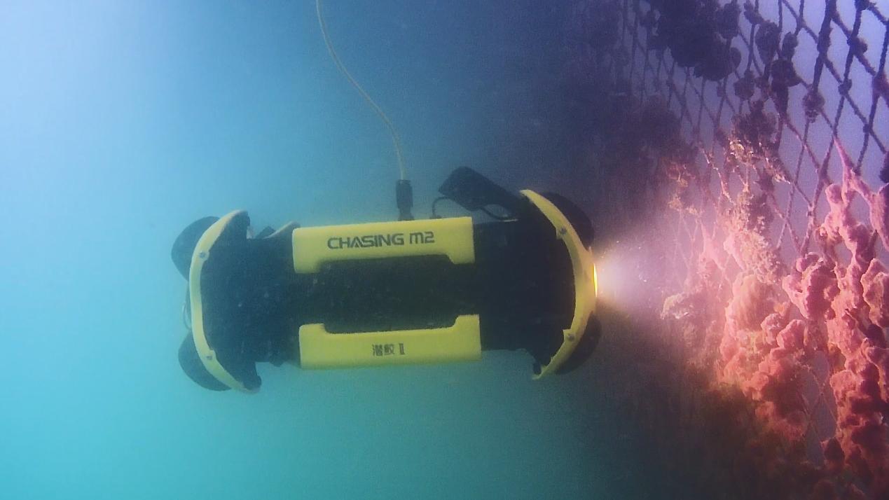 潜鲛Ⅱ-渔网巡检.png