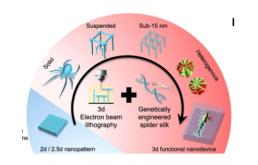 中国科学家研发出纳米机器人,材料竟是蜘蛛丝?