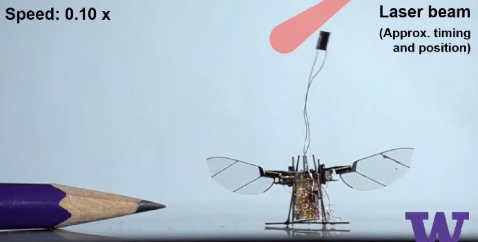 RoboFly微型机器人