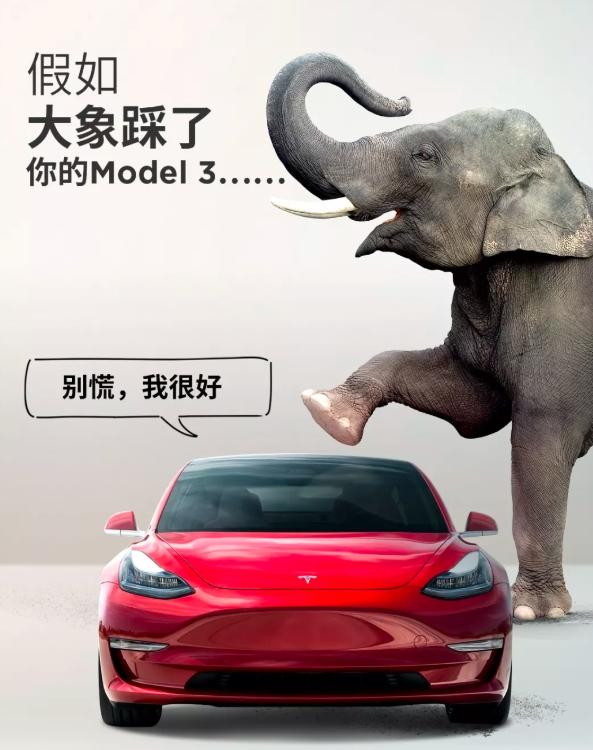Model 3玻璃车顶如何做到抵御两