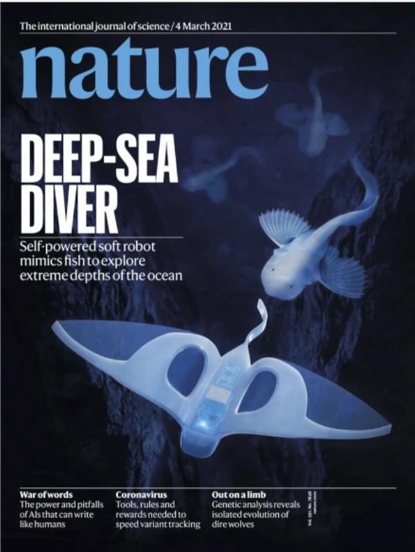 浙大发明软体机器鱼:22厘米酷似狮子鱼 遨游万米马里亚纳海沟