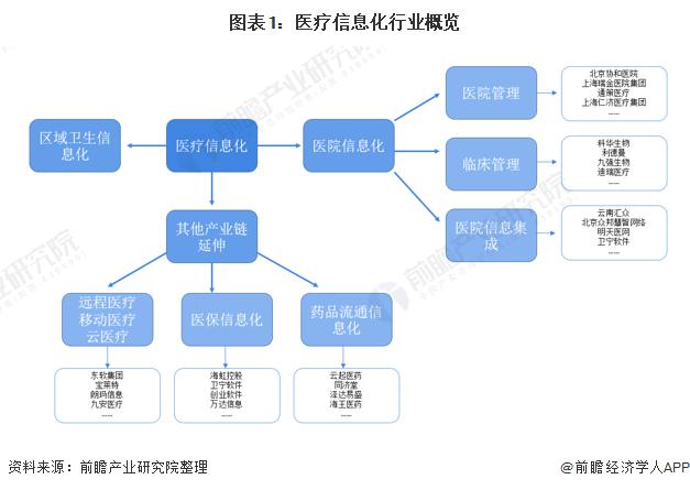 图表1:医疗信息化行业概览