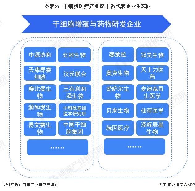 图表2:干细胞医疗产业链中游代表企业生态图