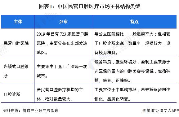 图表1:中国民营口腔医疗市场主体结构类型