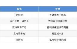 2021年中国燃料电池汽车市场现状与发展趋势分析