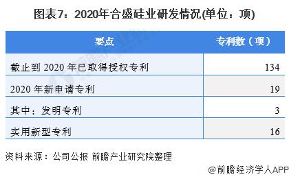 图表7:2020年合盛硅业研发情况(单位:项)