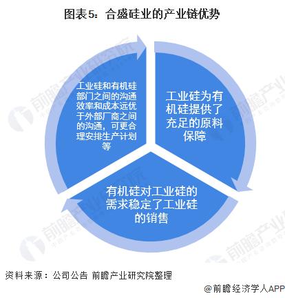 图表5:合盛硅业的产业链优势
