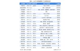 2021中国氢能源行业竞争状态与行业分析