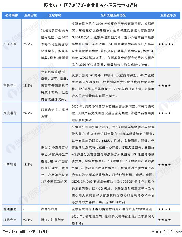 图表6:中国光纤光缆企业业务布局及竞争力评价