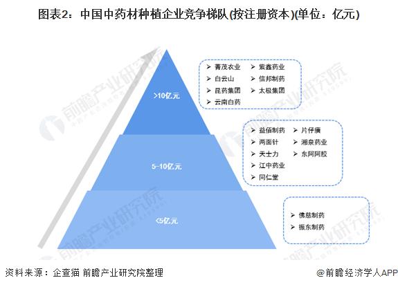 图表2:中国中药材种植企业竞争梯队(按注册资本)(单位:亿元)