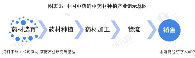 图表3:中国中药的中药材种植产业链示意图