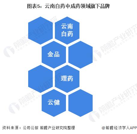 图表5:云南白药中成药领域旗下品牌