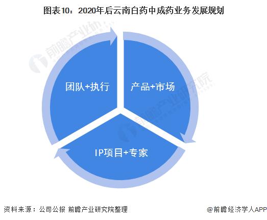 图表10:2020年后云南白药中成药业务发展规划