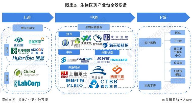 图表2:生物医药产业链全景图谱