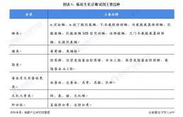 2021年中国生化诊断行业市场现状与发展趋势分析