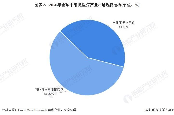 图表2:2020年全球干细胞医疗产业市场规模结构(单位:%)