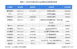 2021中国公有云IaaS市场竞争格局及市场份额