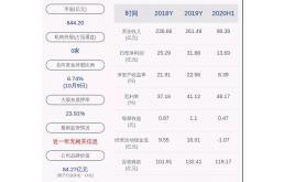 大華股份:前三季度凈利28.25 億元,安防業務開拓艱難