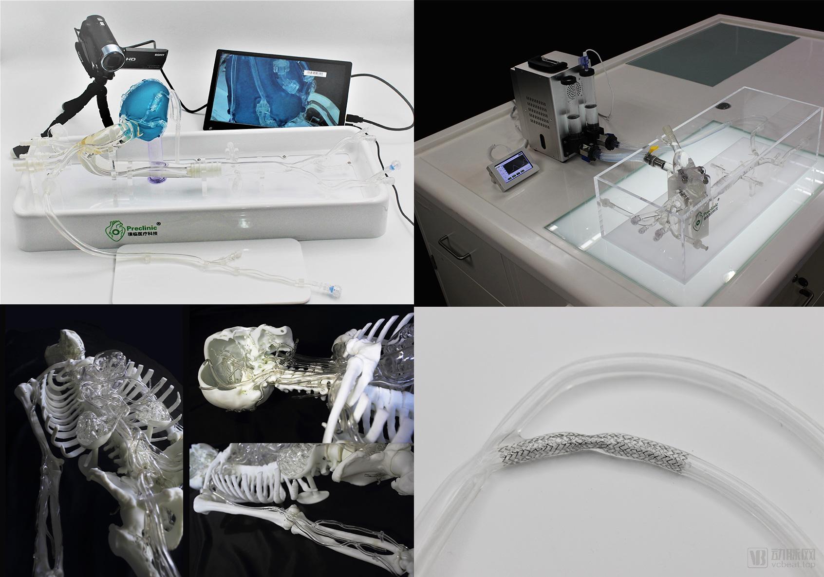 硅胶血管模型-封面图片.jpg
