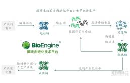 酶赛生物完成5000万元B1轮融资