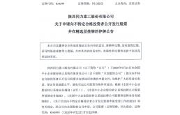 同力股份提交精选层申报文件 今年上半年利润2亿元