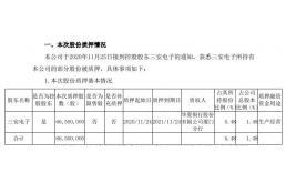 三安光电控股股东三安电子质押6650万股