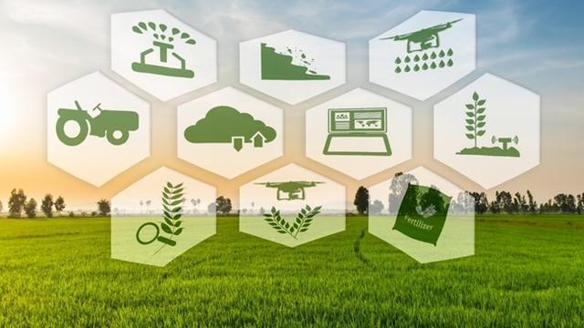 """精准农业:高科技""""武装""""到土壤的农业变革"""