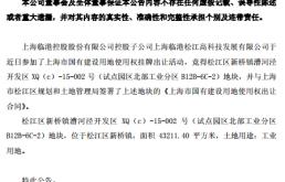 上海临港控股子公司竞得工业开发地