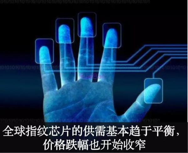 AI芯天下丨光学屏下指纹识别跌幅剧烈