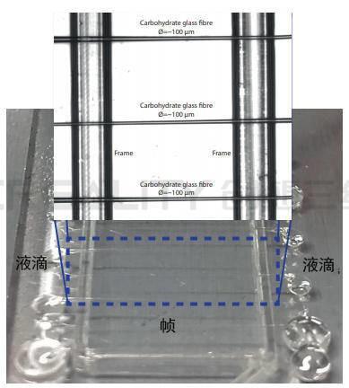 埃因霍温科技大学:研究人员使用3D打印机复制微血管结构