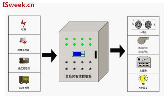 菌菇房环境监测中的温湿度传感器技术运用