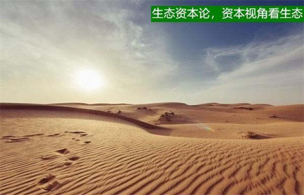 谁推平了毛乌素沙漠3000多亩林草地?